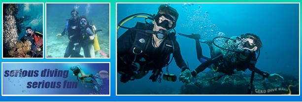Scuba Diving Di Tanjung Benoa Bali.png