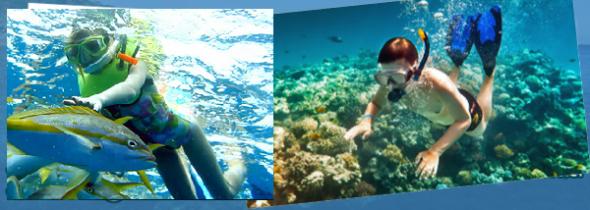 Snorkeling Di Tanjung Bneoa Bali.png21